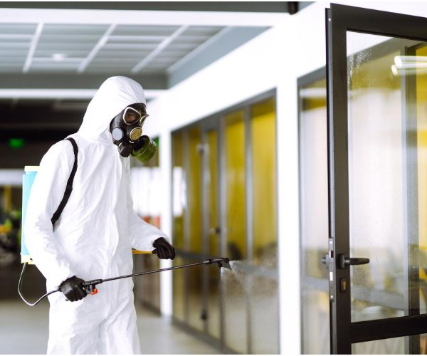 San Francisco Coronavirus (Covid-19) Cleaning Services