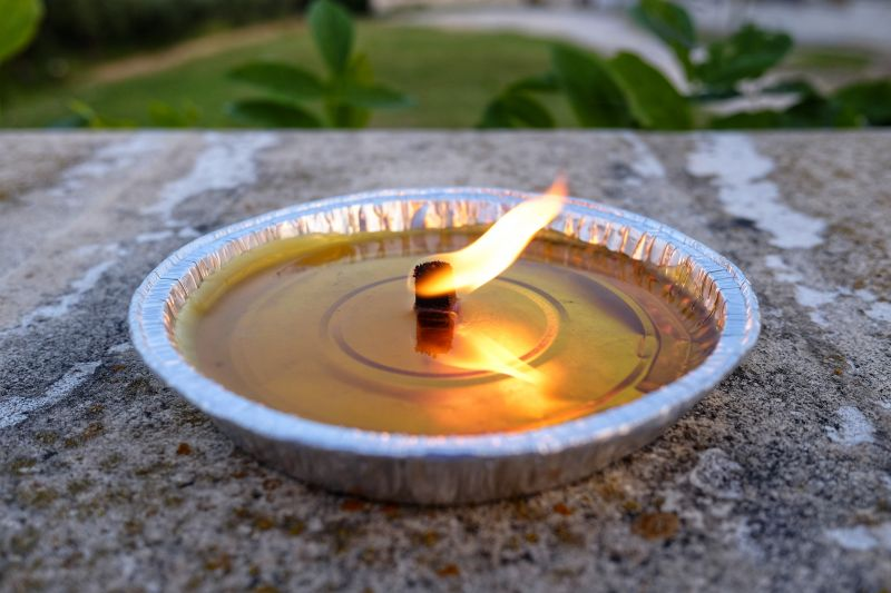 Mosquito control from Green Wave Pest Solutions citronella candle