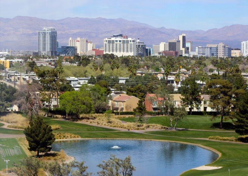 Green Wave Pest Solutions Las Vegas Pest Control