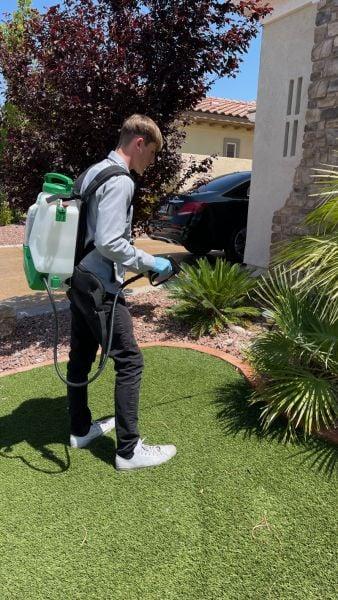 Green Wave Pest Solutions Las Vegas Bug Control